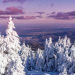 Winterwunderland Harz.