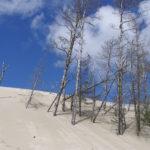 Weite Wanderdühnen vor strahlend blauem Himmel