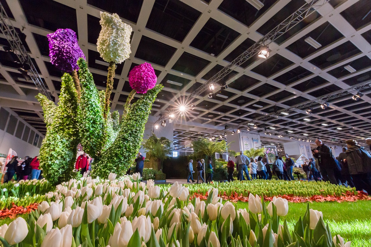 Tulpenbeet auf der Grünen Woche