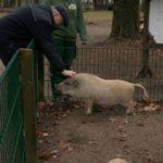 Unser Patenschwein mit unserem Chef.