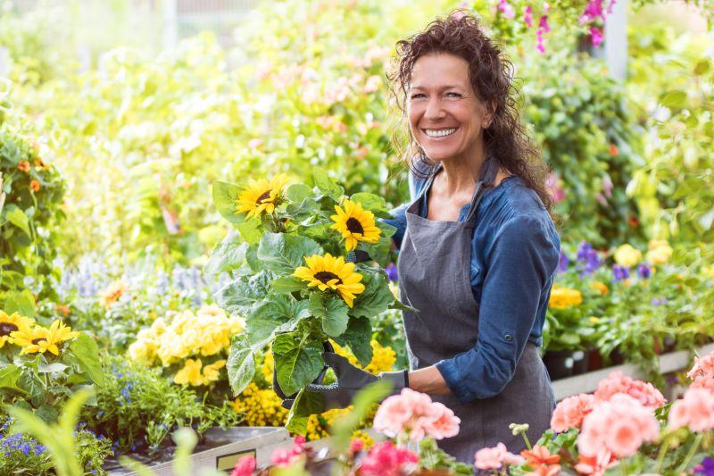 Freudig lachende Floristin im Gewächshaus mit einem Topf Sonnenblumen