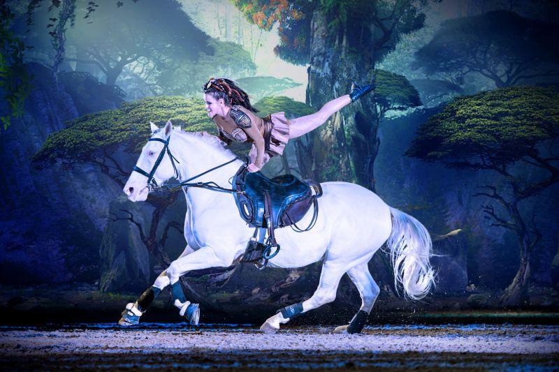 Weißes Pferd mit Reiterin.